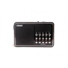 Радиоприемник  Сигнал РП-221 , FM 88-108МГц, акб 400mA/h, USB/microSD, дисплей